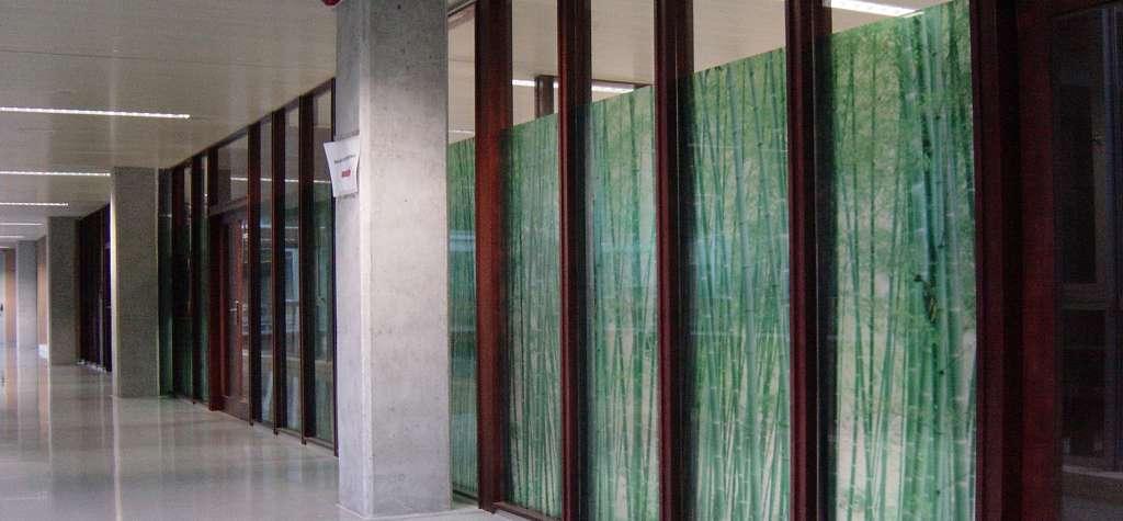 L minas solares y vinilos decorativos para cristales a medida - Vinilos cristales ventanas ...